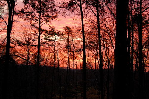 Sunrise and pink sky