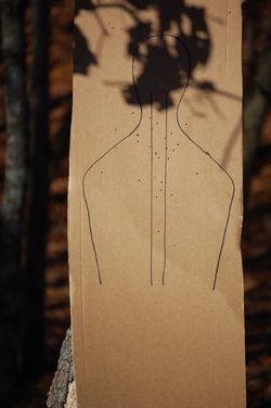 shotup cardboard body target