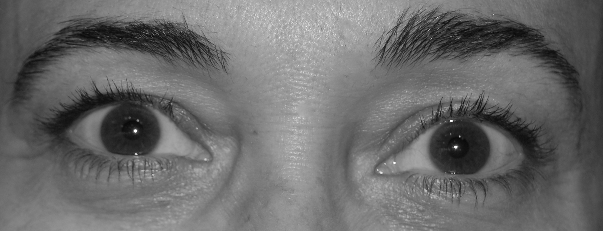 e60e5bb5d6f The pictures don't do it justice.... {AMPLIF?eye Lash & Brow ...