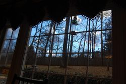kitchen window view of backyard