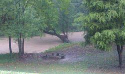 Flooding in Hamilton County