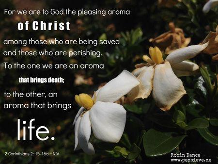 Aroma-of-Christ