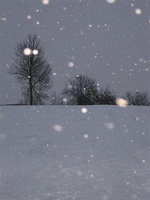 Snow_day_2