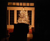 Christmas_tree_in_early_morning