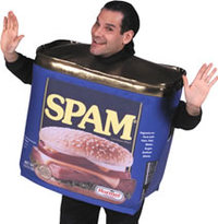 Spam_costume