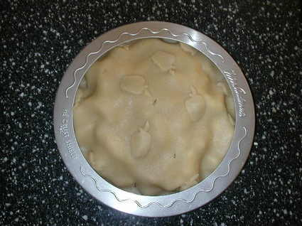 Pie_crust_saver